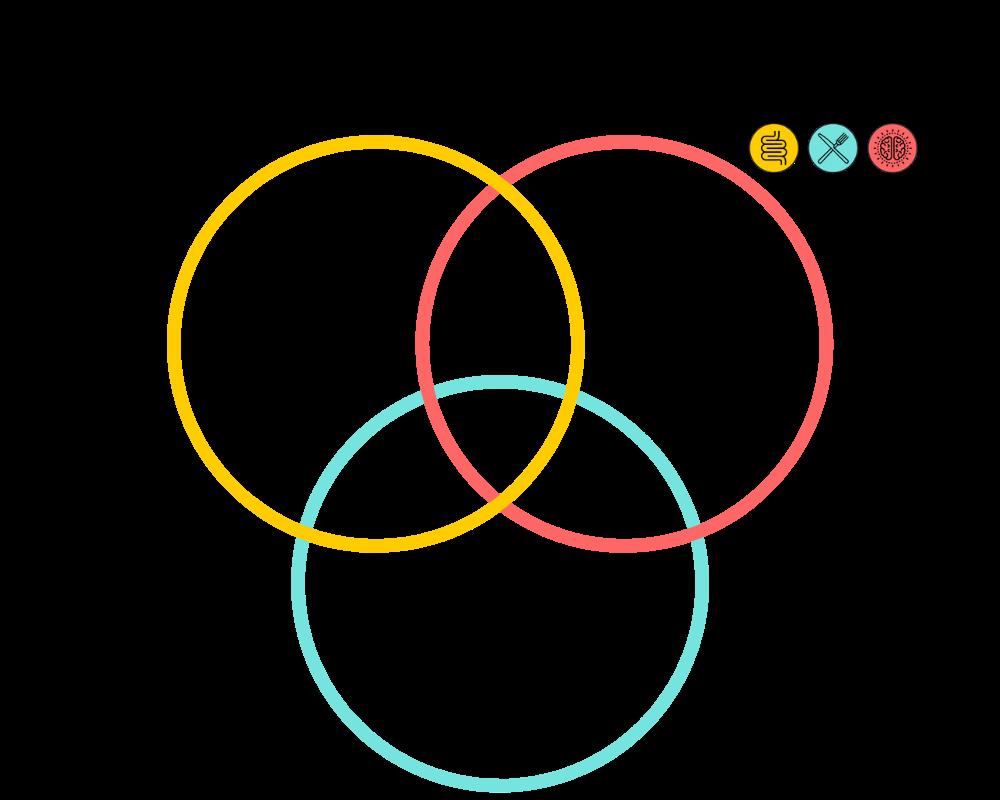 Venn Diagram of the Gut Health Blueprint